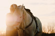 Woman with horse during sunset on farm.  Western industry agriculture concept.