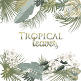 Tropical palm leaves and flowers on white background.