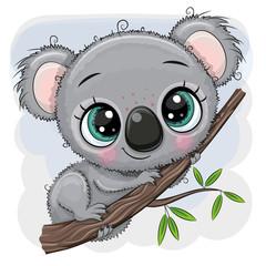 Cartoon Koala is sitting on a tree © reginast777
