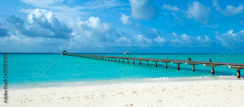tropical Maldives island with white sandy beach and sea - 259215801