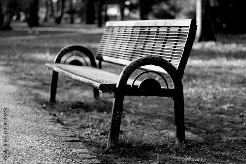 Banc dans un parc en noir et blanc © Clment
