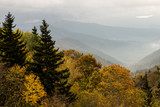 Fototapeta Fototapety na ścianę - Mountain peak in The Smokies in fall colors. © bettys4240