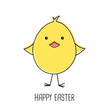 Cute cartoon chick, happy easter, vector illustration