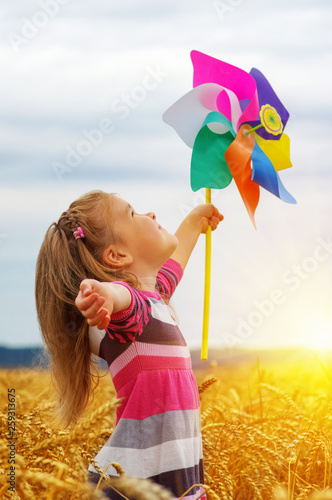Girl holding wind toy  on wheat field.