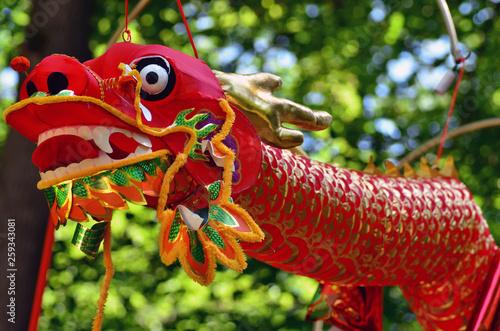Chinese dragon © Dariusz Kopestynski