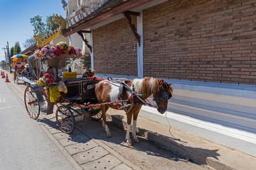 Pferdekutschen vor einem Tempel in Chiang Mai