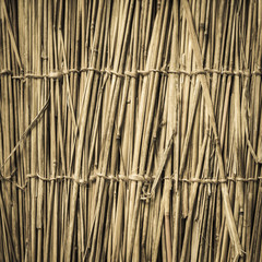 Highly detailed bamboo background. Perfect natural texture. © javarman