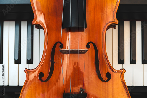 Violin and piano. Classical music. - 259496023