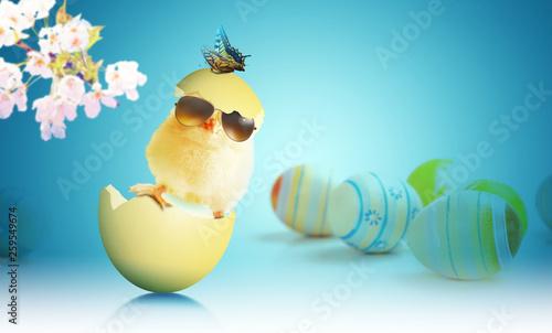 Leinwandbild Motiv Ostern Küken Motiv