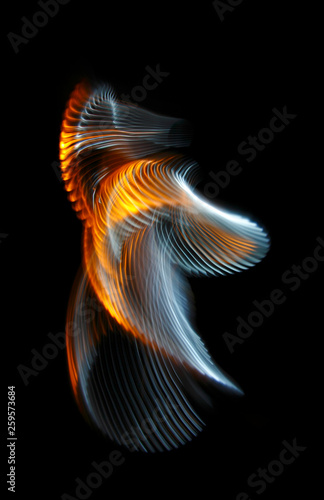 Multicolored twisted ordered parallel lines on a black background. Light in motion. Color abstraction. - 259573684