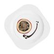 elegant food plated