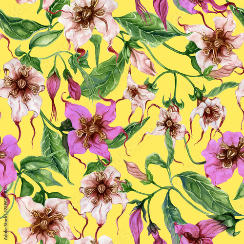 Beautiful strophanthus flowers on climbing twigs on yellow background. Seamless floral pattern. Watercolor painting. Hand painted botanical illustration. © katiko2016