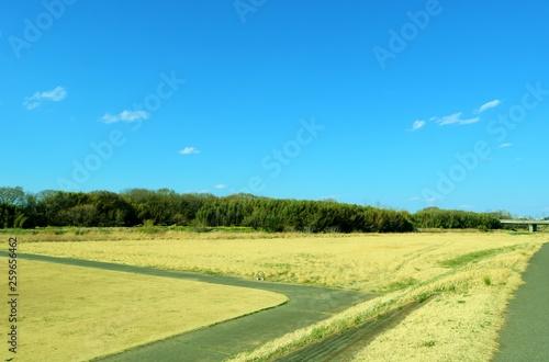 風景 空 雲 思川 河川敷 杤木 © green7