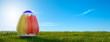 Leinwandbild Motiv Panorama Hintergrund großes Osterei auf Wiese