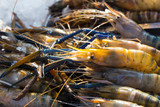 Owoce morza na rynku w Tajlandii