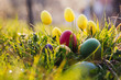 Colorful Easter eggs in the nature.