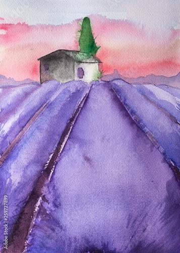 Watercolor hand drawn lavender field - 259727899