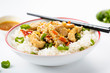 rice with chicken and vegetables - 259771016