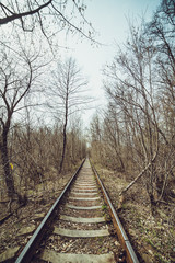 Train tunnel through the forest
