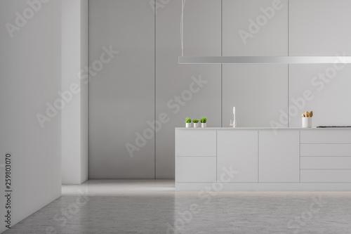 Modern white style kitchen interior.