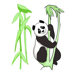 Vector drawing, color illustration, panda bear © Kateryna