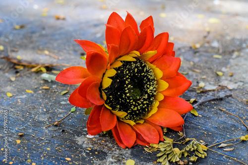 Leinwanddruck Bild Einzelne Bluete einer Kunstblume liegend
