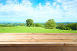 Empty wooden table over summer meadow background