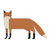 fox flat illustration on white