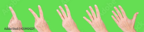 Closeup of isolated female hand counting from 1 to 5. Woman shows one, two, three, four, five fingers. Manicured nails painted with beautiful pastel pink polish. Math concept. Collage photography. - 259924221