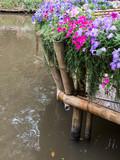 Fototapeta Bambus - Bamboo terrace with the flower row. © trainman111