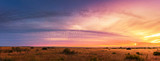 Fototapeta Sawanna - Beautiful Panorama sunset and sunrise at west coast national park , soth africa © morkdam