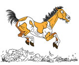 kreskówka stary koń. Szczęśliwa starzejąca się klacz w kolorze pinto lub mustang biegnąca swobodnie w galopie. Ilustracja wektorowa widok z boku