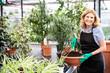 canvas print picture - Sympathisch lachende Frau bei der Arbeit in einem Gewächshaus