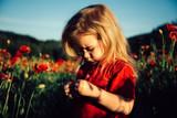 Little child in poppy field. Sweet little boy on the beauty field with wild flowers. Summer mood.