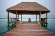 Back view of Young woman sits on wooden bridge on Bacalar Lake, Clear turquoise water in Mexico.