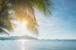 Coconut plam tree with sun and blue sky at tropical beach, Summer vacation concept