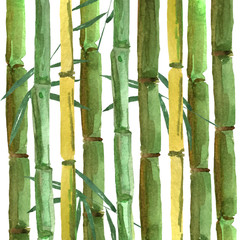 Hand-drawing bamboo background with leaves. watercolor illustration for design and decoration of cards, wallpapers, invitations. © Анастасия Погуда