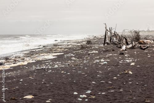 jade beach Hokitika, New Zealand - 260223062