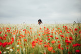 Girl Photographing Poppies