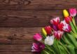 tulips on wood background - 260264416