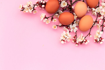 Easter pink background with chicken eggs and spring flowers. Top view with copy space.