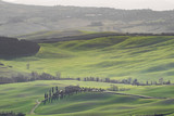 Green typical Tuscany landscape in Italian region with fields, meadow, hills and path with farmhouses