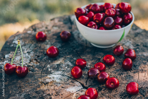 A wooden old stump with a sweet cherry on it. Background © Zayne C.