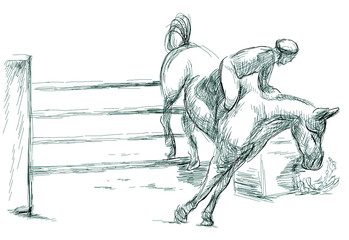 Show Jumping, hand drawn illustration. Line art technique on white.