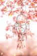 Leinwandbild Motiv Traumfänger im Kirschbaum Blüte
