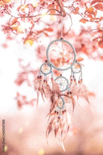 Leinwanddruck Bild Traumfänger im Kirschbaum Blüte
