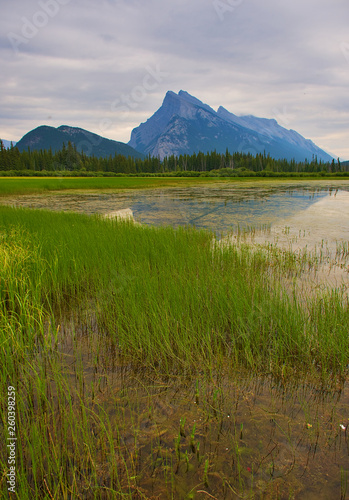 Vermilion Lakes Overlooking Mount Rundle. Rocky mountain canada ( Canadian Rockies ). Near the city of Calgary. Portrait, fine art. Banff National Park, Alberta, Canada: August 4, 2018 - 260398259