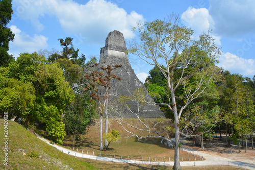 The archaeological site of the pre-Columbian Maya civilization in Tikal National Park , Guatemala The park is UNESCO World Heritage Site since 1979