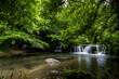 Waterfalls of Monte Gelato in the  Valle del Treja near Mazzano Romano, Lazio, Italy - 260440040