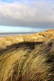 Küstenlandschaft Nordsee, Insel Juist